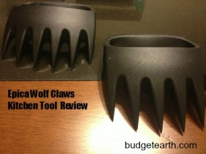 Epica Wolf Claws Review: The Perfect Shredding Tool