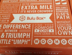 Bulu Box Review: Are Subscription Boxes Worth It?