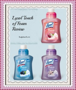 Lysol Touch of Foam Antibacterial Hand Wash Review