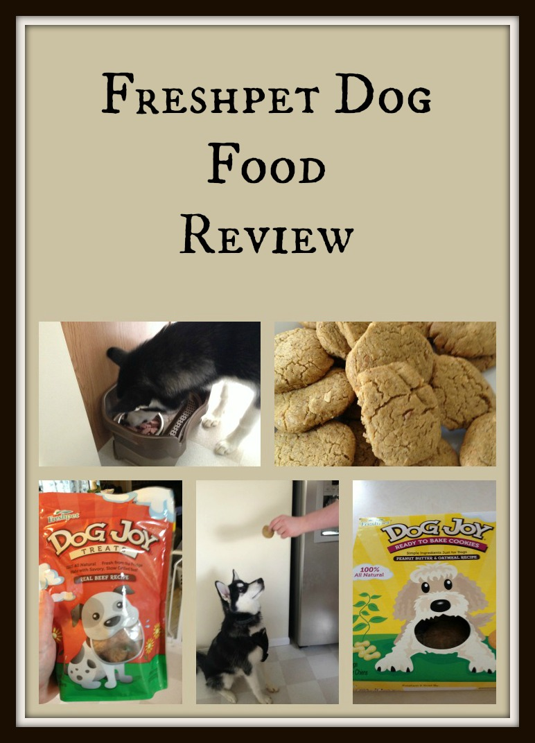 Freshpet Review