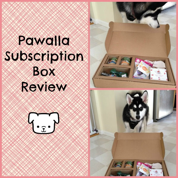 Pawalla Feature