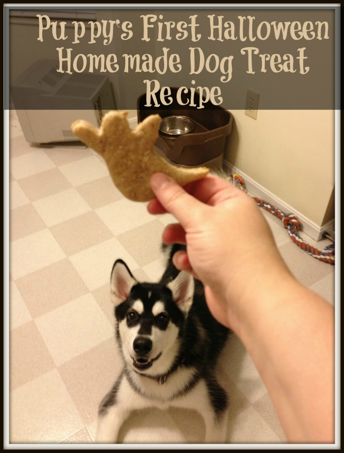 Homemade-Dog-Treat-Recipe