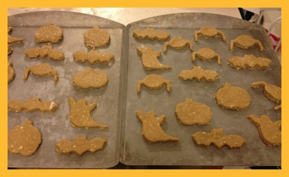 homemade dog treats 6