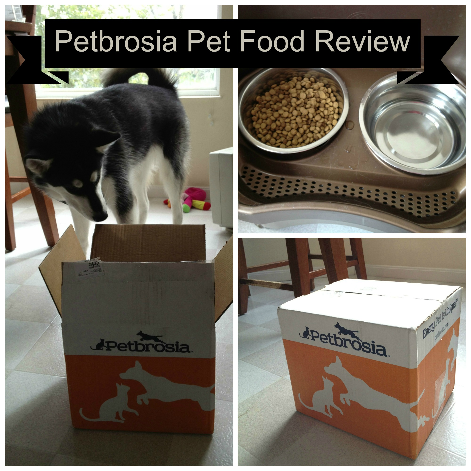Petbrosia Review: Healthy Food for Every Dog