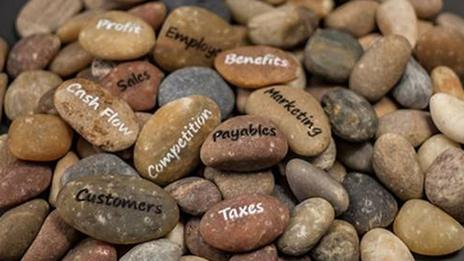 Too Many Rocks in Your Pocket Business