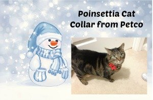 Poinsettia Cat Collar