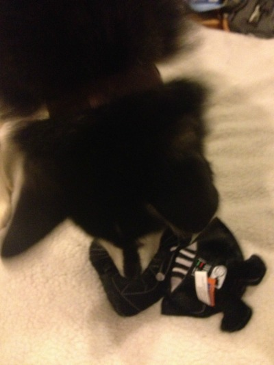 Darth Vader Dog Toy