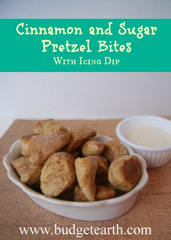 Cinnamon and Pretzel Bites