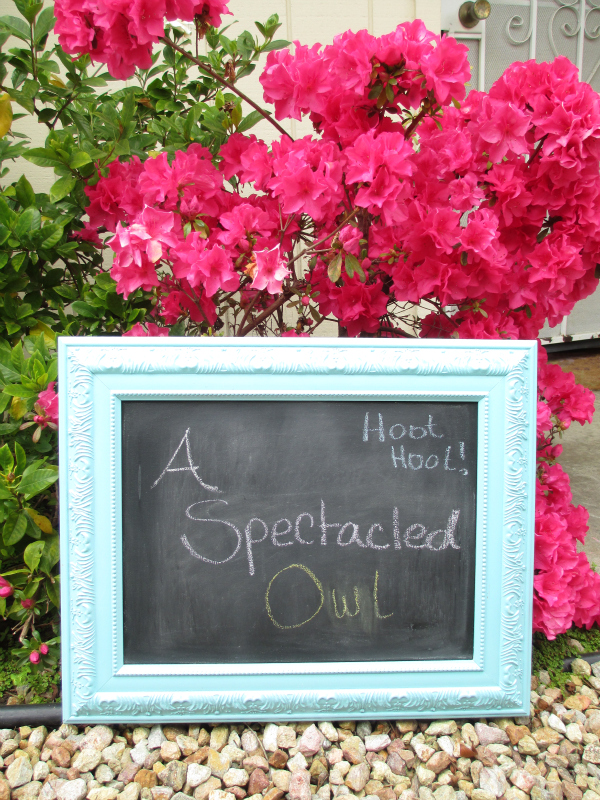 Want to make a cute chalkboard for your office or child's room? Learn how to make your own chalkboard in this fun tutorial from my friend Tara at A Spectacled Owl!