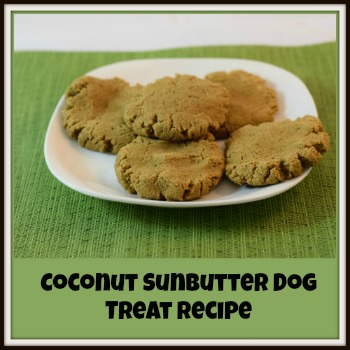 Coconut Sunbutter Dog Treat Recipe feature
