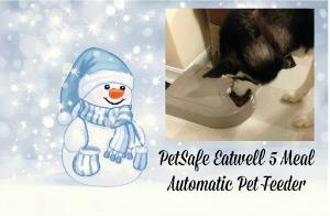 PetSafe Eatwell 5 Meal Automatic Pet Feeder