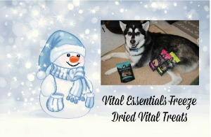 Vital Essentials Freeze Dried Vital Treats