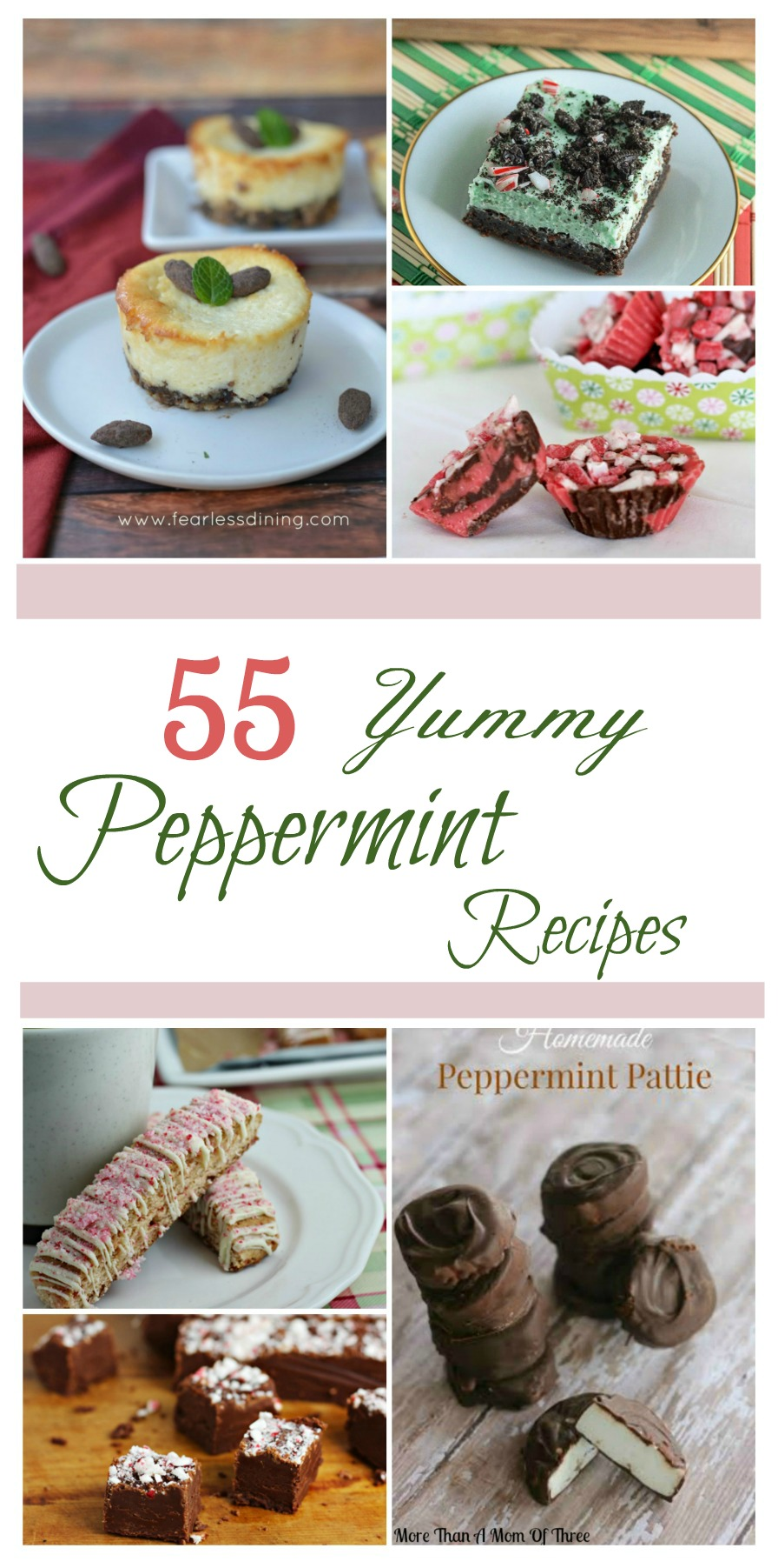 Looking for some delicious recipes? Check out these 55 Yummy Peppermint Recipes here!