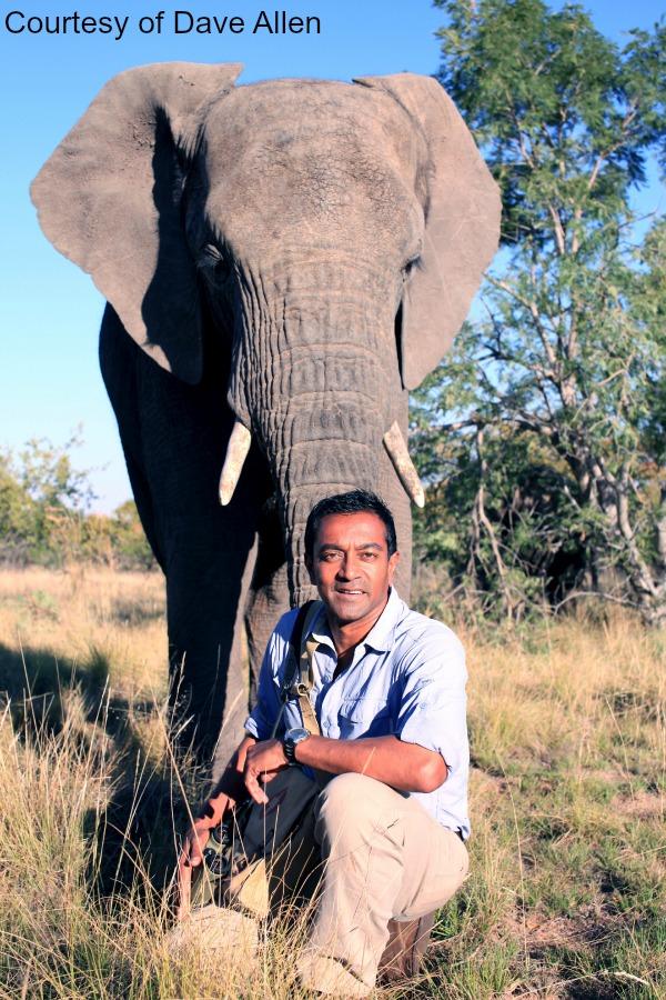 02Sanjayan  Elephant Plains