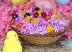 Easter-Mini-Cake-1-