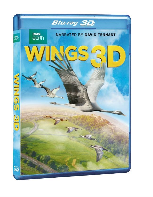 WINGS_3D_BD_3D