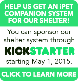 thumbnail_help_shelter