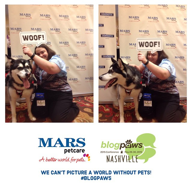 BlogPaws Mars Petcare