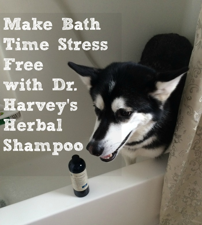 Dr Harvey's Herbal Shampoo
