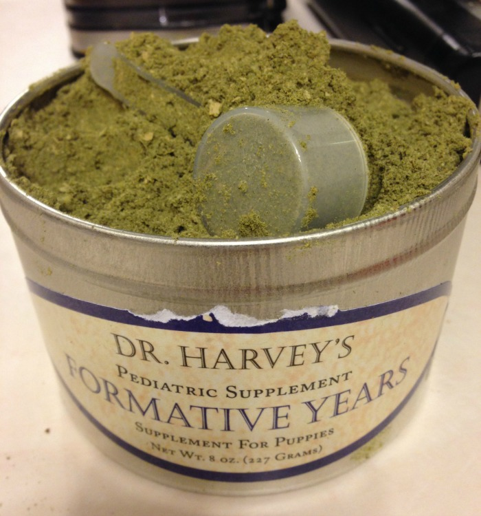 Looking for a high quality supplement for puppies? See what we think of Dr. Harvey's Formative Years supplement for puppies here!