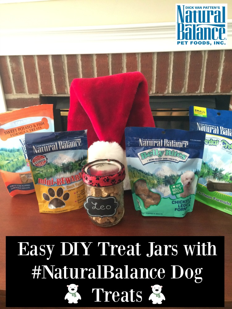 Looking for an adorable gift for canines on your Christmas list? Make dogs smile this holiday season with our super easy DIY Treat Jars here! #NaturalBalance