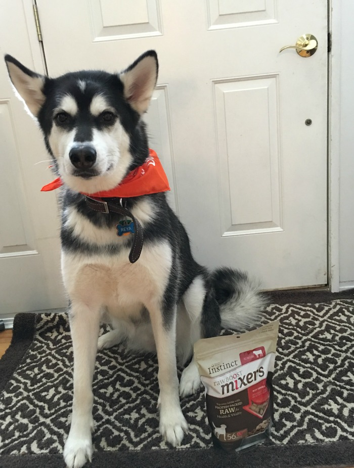 Add Fun to Dog Meals with Instinct Raw Boost Mixers #mixitup 3