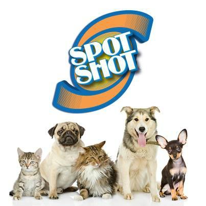 SpotShotPets