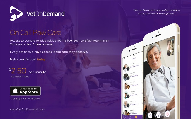Vet on Demand