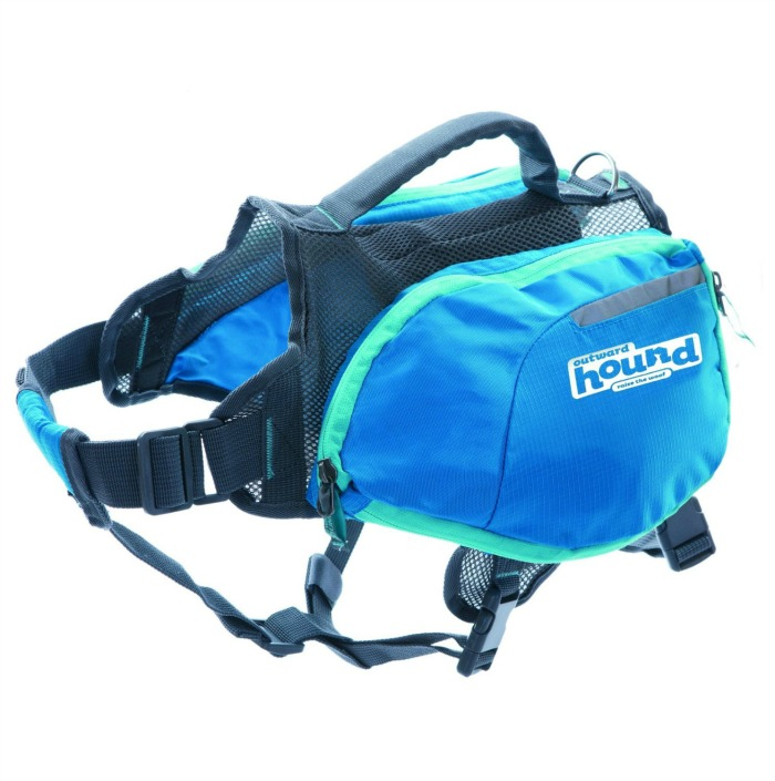 daypak backpack