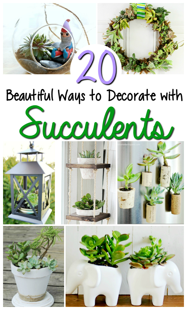 Looking for decorative plants that are great for those without a green thumb? Check out these 20 Beautiful Ways to Decorate with Succulents here!