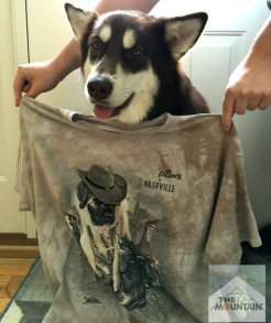 Planning a trip this summer & want to look stylish & be comfortable? See how we are traveling to BlogPaws Phoenix in style with The Mountain t-shirts! #blogpaws