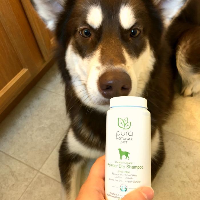 Ivi Biggy Dry Shampoo