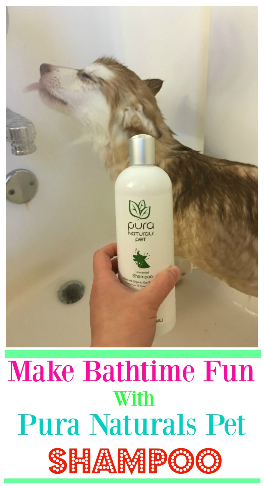 Looking for a natural shampoo that is perfect for both puppies & dogs? See what we think of Pura Naturals Pet line of dog shampoos here!