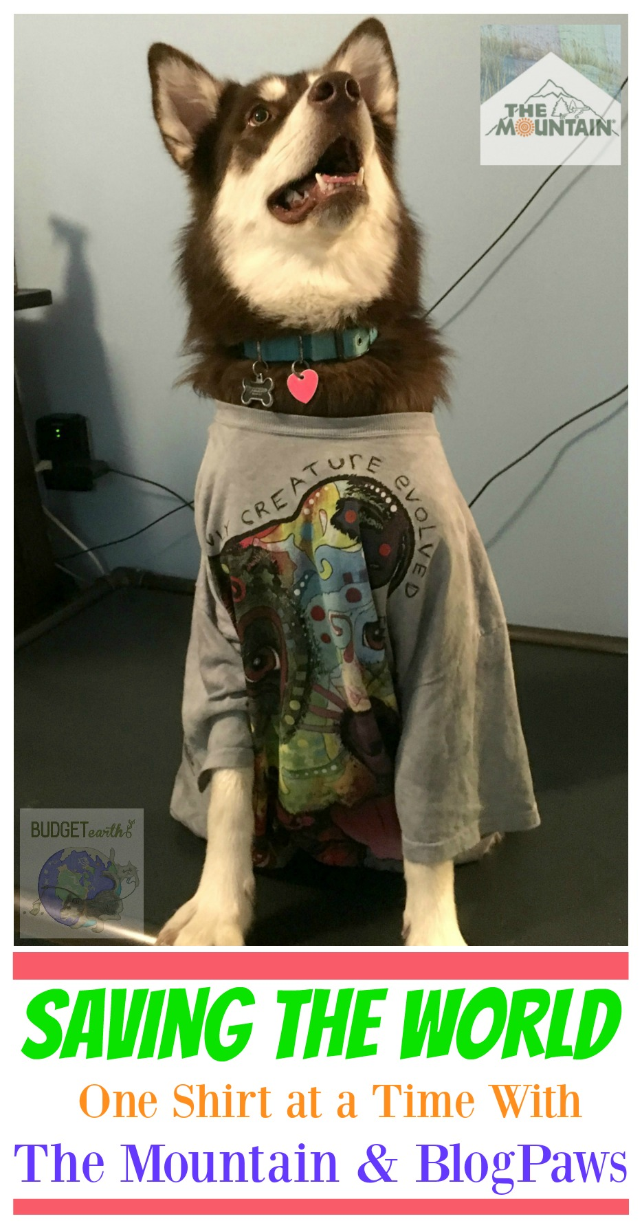 Saving the World One Shirt at a Time with The Mountain & BlogPaws