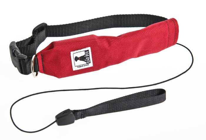 Rad Dog Release & Run Retractable Leash