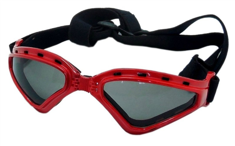 dog goggles 2