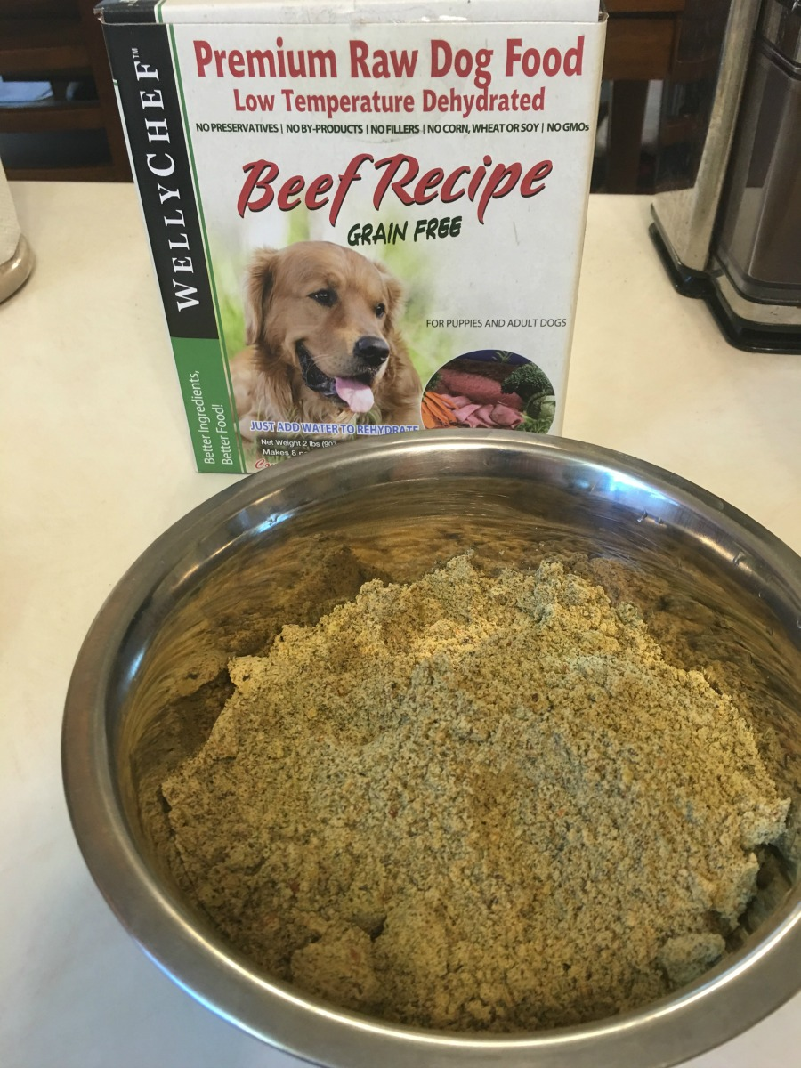 Looking for a dehydrated dog food that isn't just yummy for dogs but gives the benefits of raw feeding? See what we think of WellyChef RAW Low Temperature Dehydrated Dog Food here!