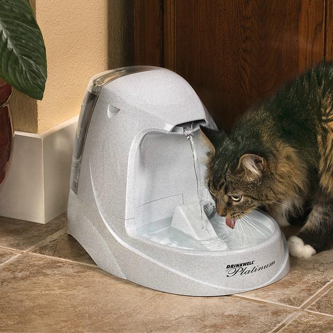 petsafe-drinkwell-premium-pet-fountain