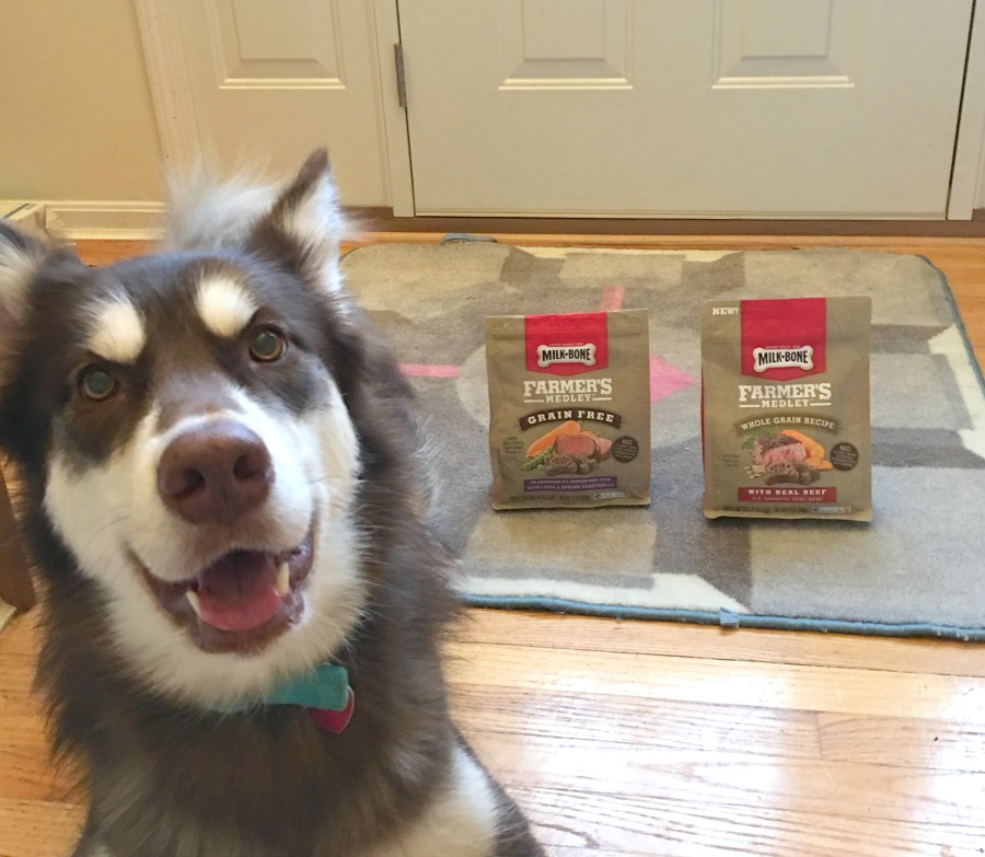 Looking for wholesome treats that are perfect for any budget? See what we think of Milk-Bone Farmer's Medley Treats here!