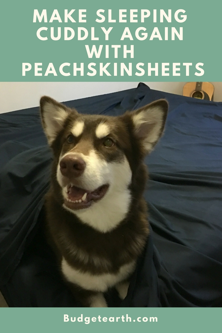Looking for comfortable sheets that are not only soft, but affordable? See what we think of PeachSkinSheets here!