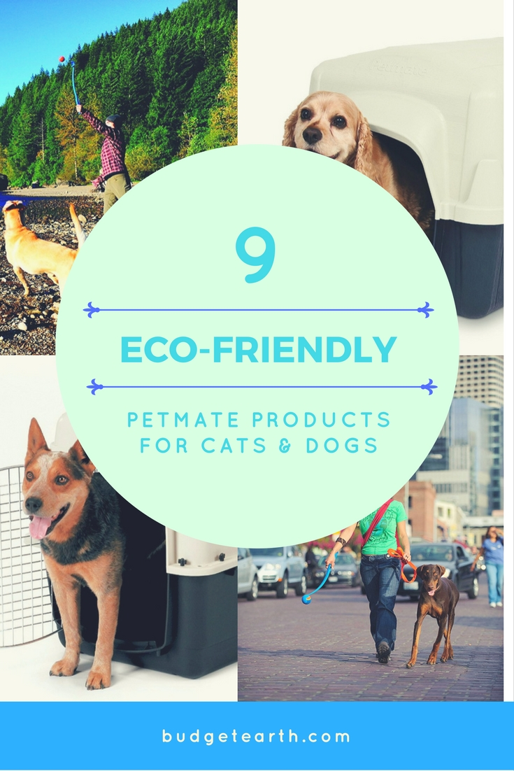 Looking for eco-friendly products for cats & dogs that are made in the United States? Check out these 9 amazing Petmate products for pet households here!