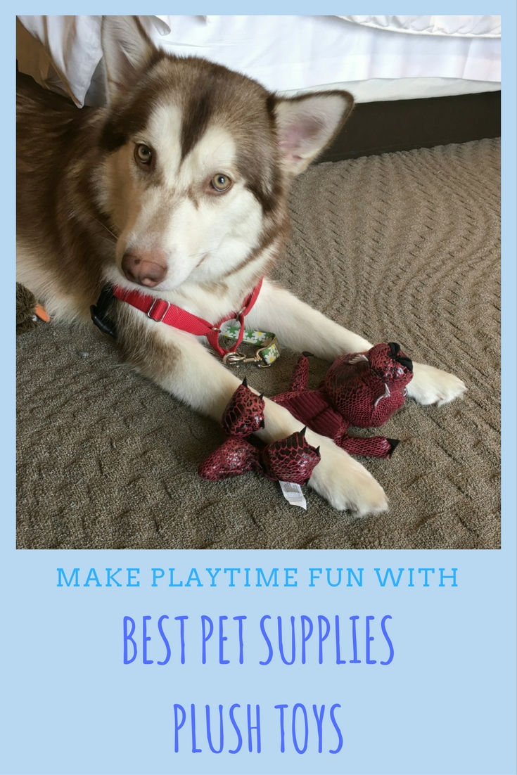 Looking for well made dog toys without a high price tag? See what we think of Best Pet Supplies plush dog toys here!