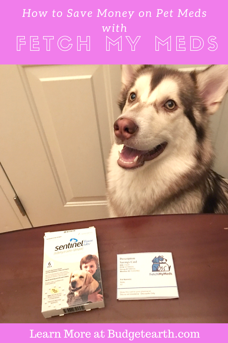 Discount pet medication coupon