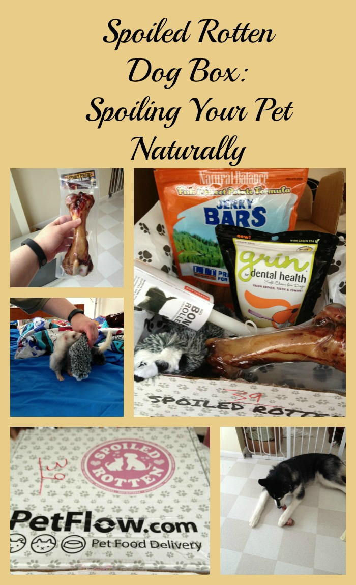 Spoiled Rotten Dog Box Review Spoiling Your Pet Naturally