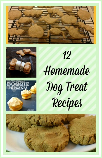 12 Homemade Dog Treat Recipes