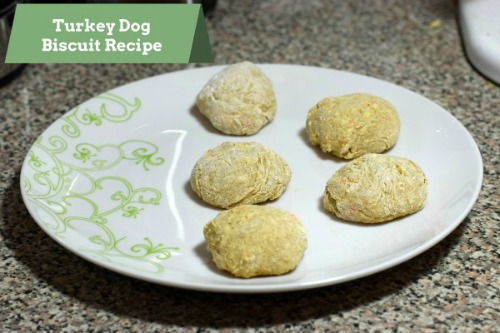 Turkey Dog Biscuit Recipe