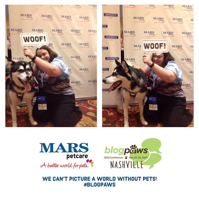 BlogPaws 2015: Reya & Mars Petcare Take Over Nashville!