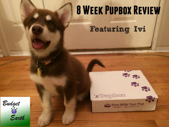 Looking for a monthly subscription box that grows with your puppy? See what we think of the PupBox here!