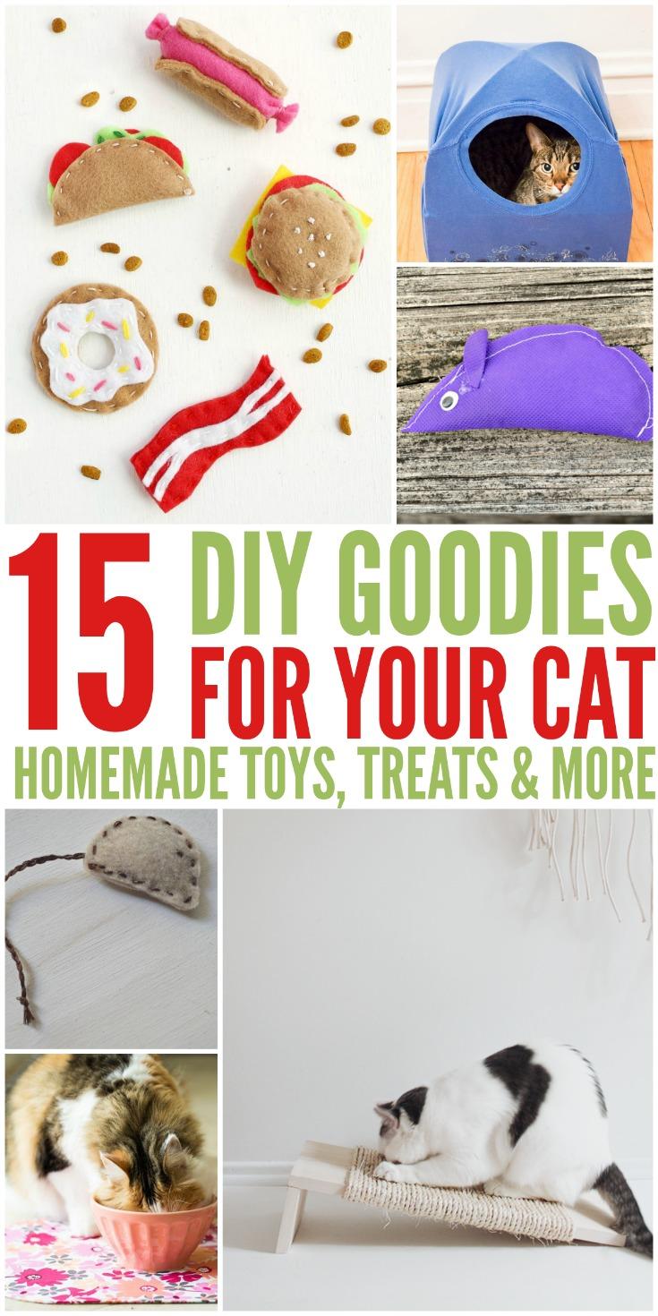 15 DIY Goodies for Your Cats