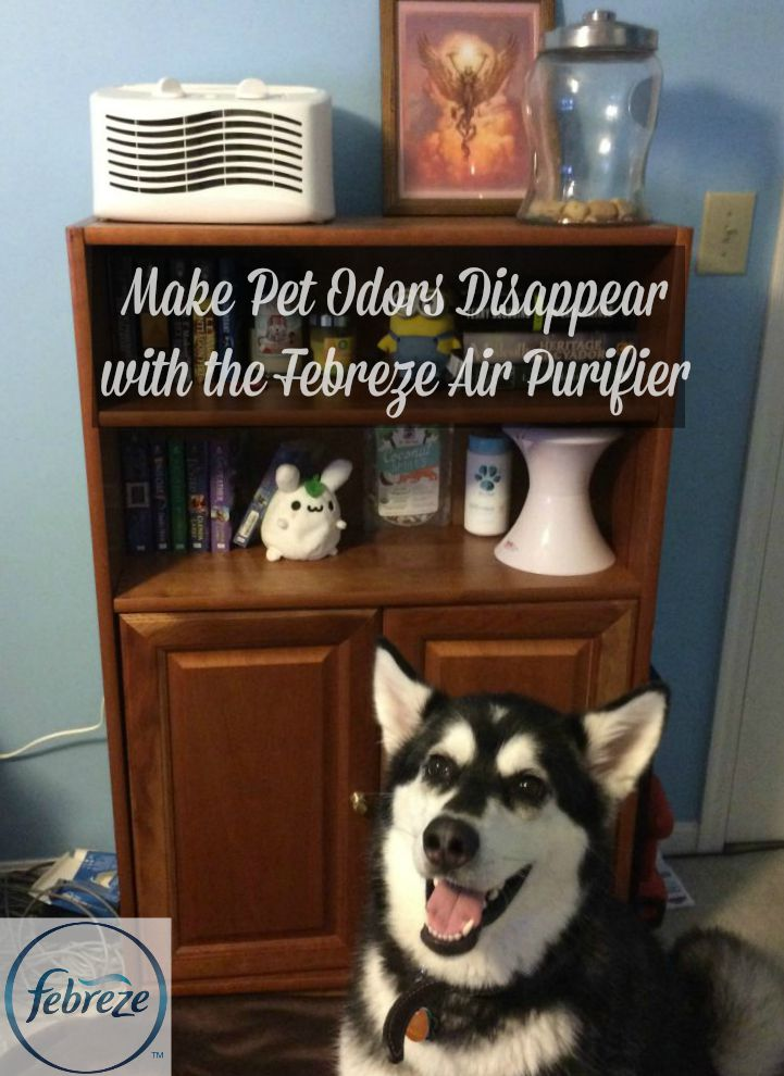 Love your pets but tired of fighting back against not so nice pet odors? See what we think of the Febreze Air Purifier and how we think it helped our home here!